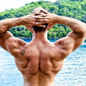 The Anabolic State How To Build Muscle Fast